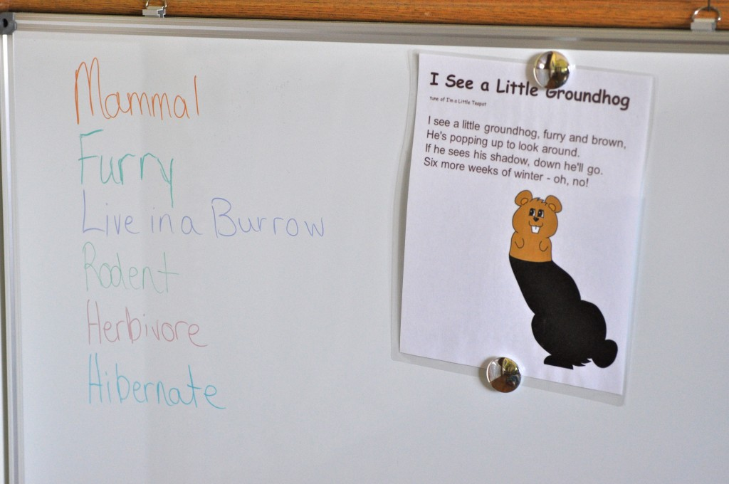 Our white board with the week's rhyme and groundhog characteristics